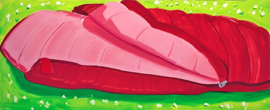 sleeping bag, 95 x 220 cm, Öl/N, 2002